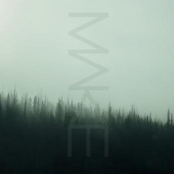 MAKE - The Golden Veil