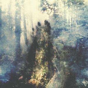 sylvaine wistful album cover