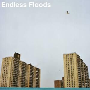 endless-floods-ii