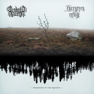 twilight fauna evergreen refuge split