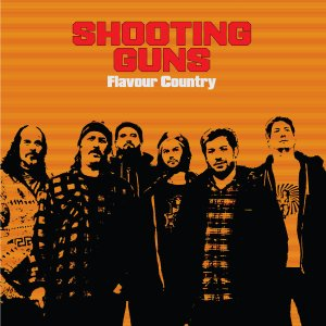 shooting guns - flavor country