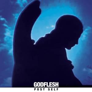 godflesh post-self album