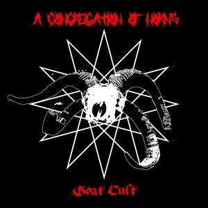 a congregation of horns goat cult