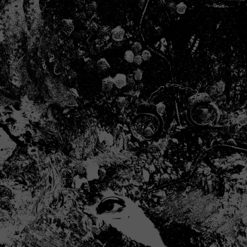 Primitive Man : Unearthly Trance - Split