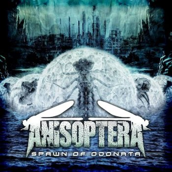 Anisoptera - Spawn of Odonata