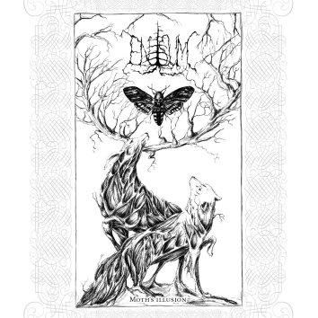 enisum - moth's illusion