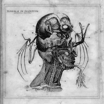 cover Tenebrae In Perpetuum - Anorexia Obscura