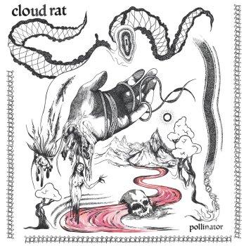 cloud rat pollinator