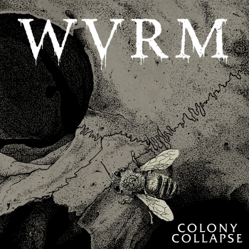 wvrm colony collapse